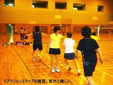 20090609-lemon3